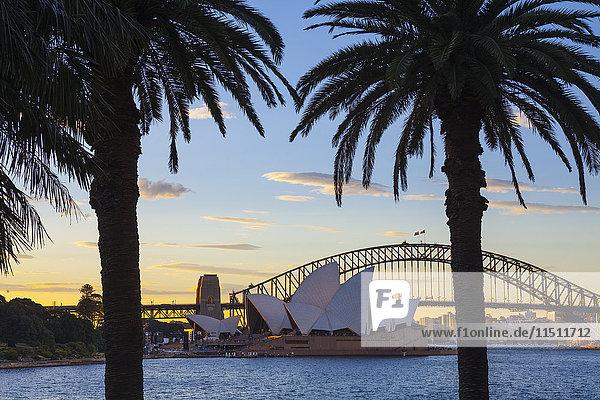 Sydney Opera House & Harbour Bridge  Darling Harbour  Sydney  New South Wales  Australia