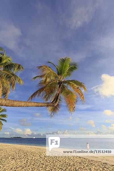 Maldives  South Ari Atoll  Thudufushi Island  Diamonds Thudufushi Resort  couple walking on the beach (MR)