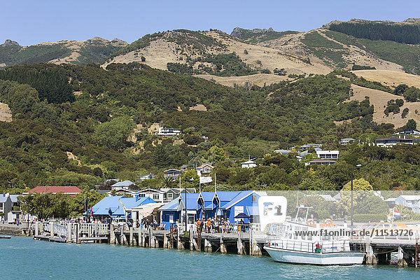 View from Akaroa Harbour to the Main Wharf  Akaroa  Banks Peninsula  Canterbury  South Island  New Zealand  Pacific