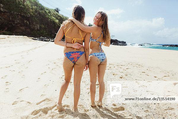 Freunde am Strand  die lächelnd über die Schulter in die Kamera schauen  Oahu  Hawaii  USA
