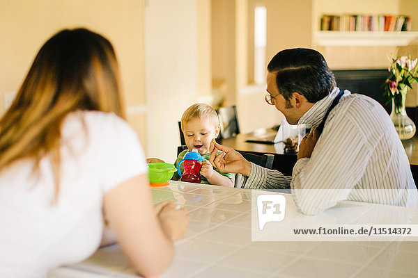 Family sitting at kitchen table  young son holding sippy cup  father putting on neck tie