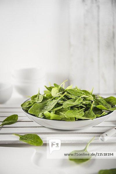 Frisch gewaschener Spinat auf weissem Teller
