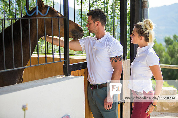 Male and female grooms tending horses in rural stables