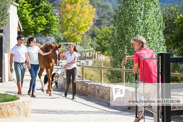 Junge Stallknechtin führt Pferd in ländlichen Ställen