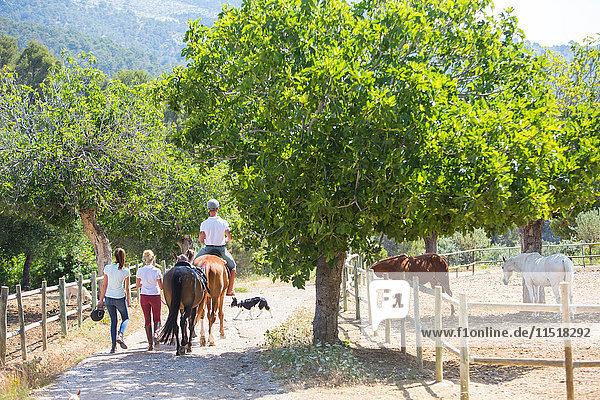 Rückansicht einer Stallbursche,  die einen Reiter auf der Koppel eines ländlichen Reiterhofes führt
