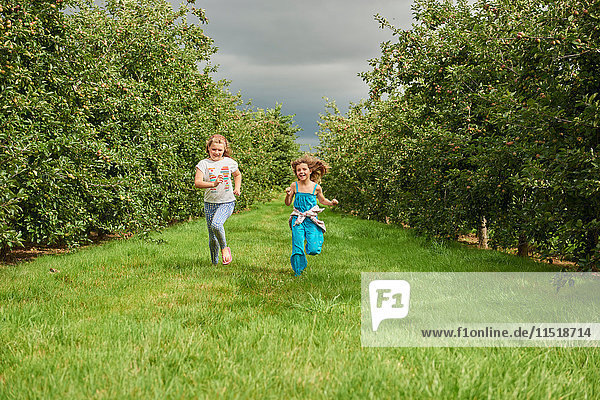 Mädchen laufen im Apfelgarten