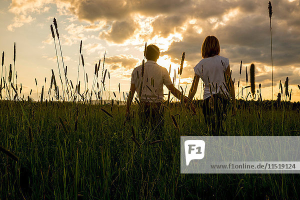 Couple holding hands in field at sunset