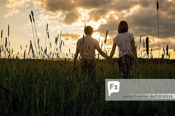 Paar hält bei Sonnenuntergang im Feld Händchen