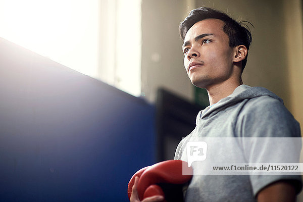 Young male boxer holding boxing gloves in gym