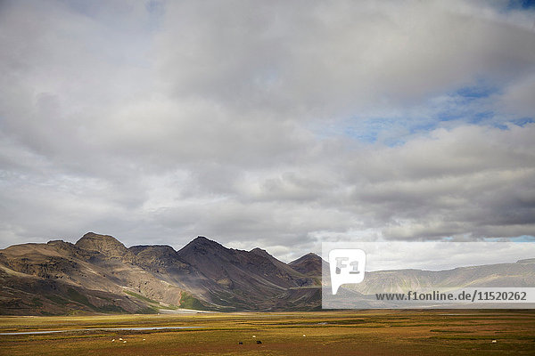 Distant landscape of valley and mountains  Iceland