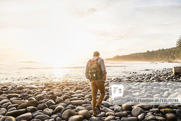 Rear view of man walking on beach in Juan de Fuca Provincial Park  Vancouver Island  British Columbia  Canada