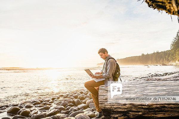 Man sitting using laptop on beach in Juan de Fuca Provincial Park  Vancouver Island  British Columbia  Canada