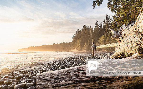 Man looking out from beach in Juan de Fuca Provincial Park  Vancouver Island  British Columbia  Canada