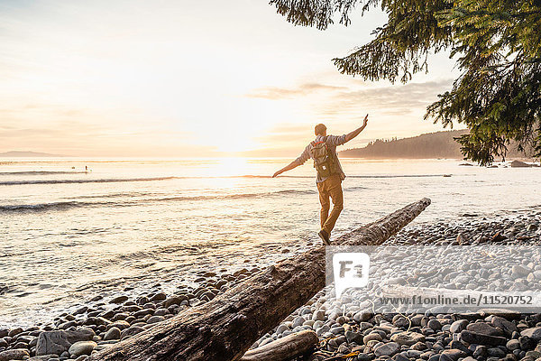 Man balancing on driftwood log on beach in Juan de Fuca Provincial Park  Vancouver Island  British Columbia  Canada