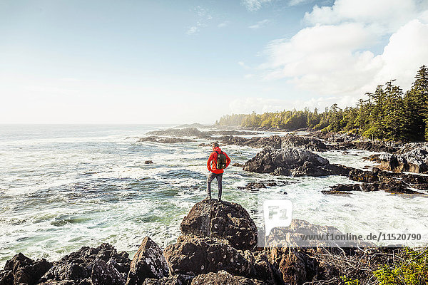 Male hiker looking out to sea from rocky coast  Wild Pacific Trail  Vancouver Island  British Columbia  Canada