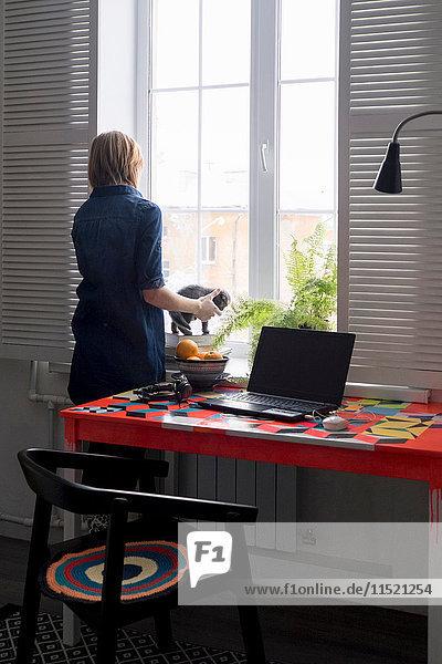 Frau spielt mit Kätzchen auf der Fensterbank