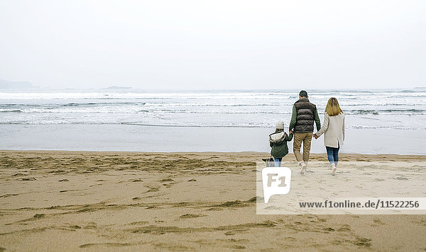 Family walking with dog on the beach in winter
