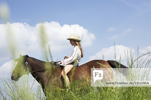 Girl riding horse on meadow