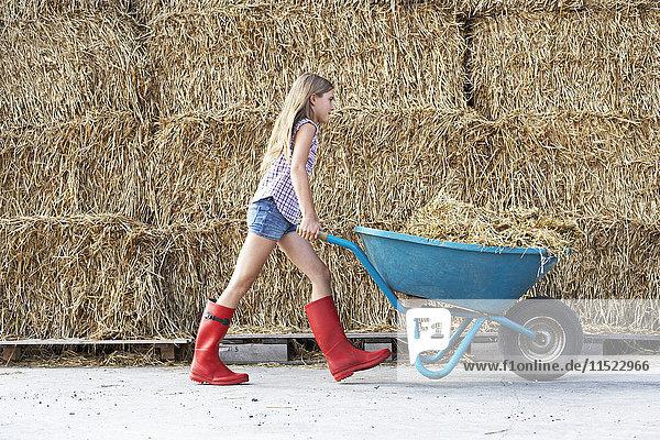 Mädchen wandern mit Schubkarre auf dem Reiterhof