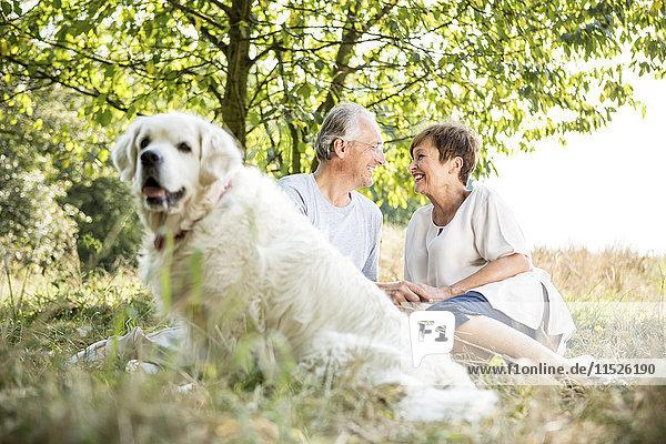Glückliches Seniorenpaar mit Hund auf der Wiese