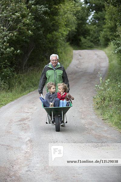 Grandfather pushing wheelbarrow with grandchildren