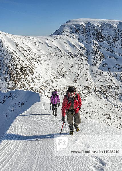Vereinigtes Königreich  Schottland  Ben Nevis  Carn Mor Dearg  Bergsteiger