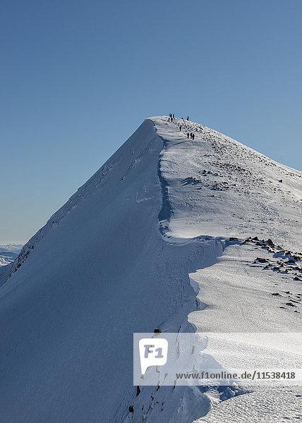 Großbritannien  Schottland  Ben Nevis  Carn Mor Dearg  Bergsteiger auf dem Gipfel