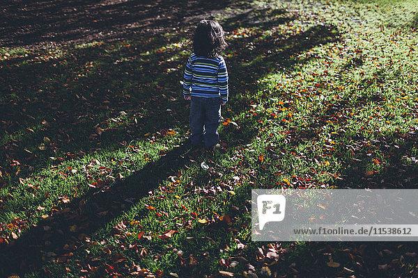 Junge steht allein auf einer Wiese mit Herbstblättern