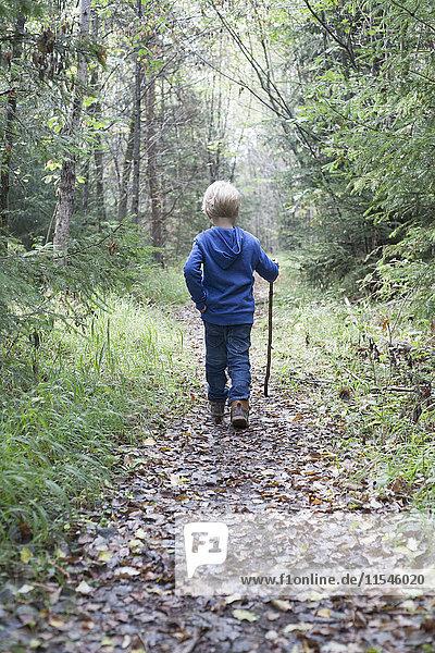 Rückansicht des kleinen blonden Jungen auf einem Waldweg
