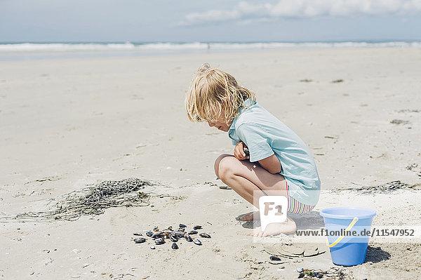 Frankreich  Bretagne  Finistere  Pointe de la Torche  Junge spielt mit Muscheln am Strand