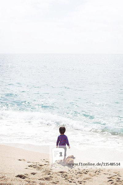 Rückansicht des kleinen Jungen  der neben seinem Hund am Strand steht und auf das Meer schaut.
