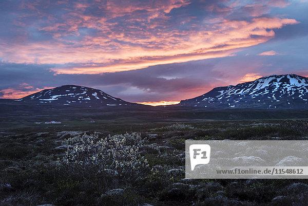 Island  Golden Circle Nationalpark bei Mitternachtssonne