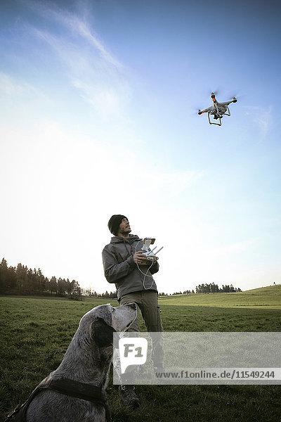 Mann auf einer Wiese fliegt Drohne  während sein Hund zusieht. Mann auf einer Wiese fliegt Drohne, während sein Hund zusieht.