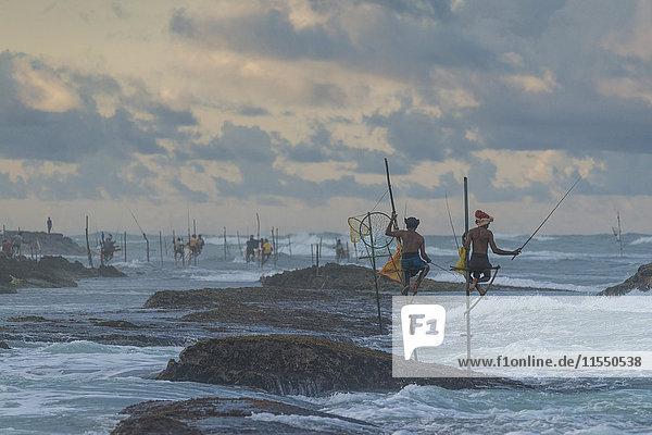 Sri Lanka  Galle  Stelzenfischer