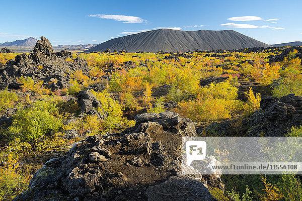 Hverfell Crater rising out of the Dimmuborgir Lava Field  Myvatn Region  Iceland  Polar Regions