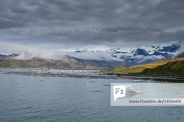 The bay of Grytviken  South Georgia  Antarctica  Polar Regions