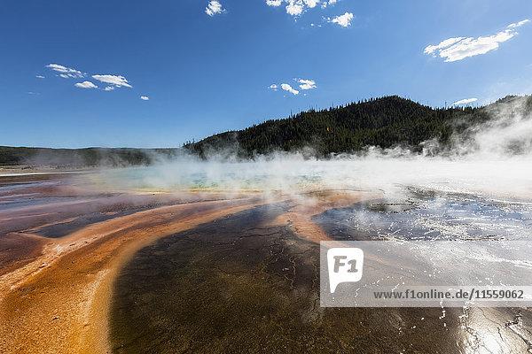 USA  Wyoming  Yellowstone Nationalpark  Midway Geysirbecken  Grand Prismatic Spring