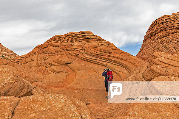 USA  Arizona  Page  Paria Canyon  Vermillion Cliffs Wilderness  Coyote Buttes  red stone pyramids and buttes  tourist taking a picture