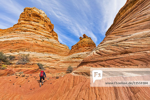 USA  Arizona  Page  Paria Canyon  Vermillion Cliffs Wilderness  Coyote Buttes  tourist hiking at red stone pyramids and buttes