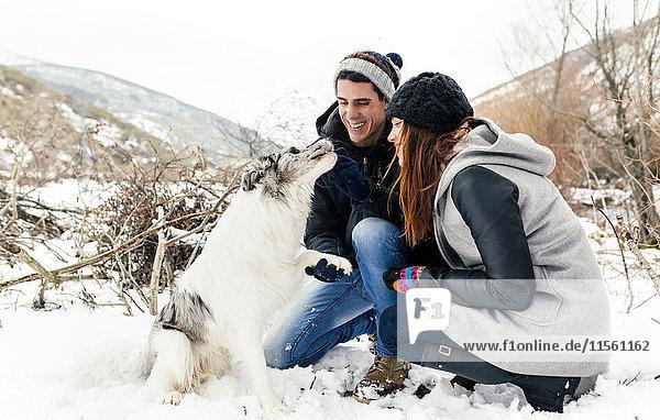 Junges Paar  das sich mit seinem Hund im Schnee amüsiert
