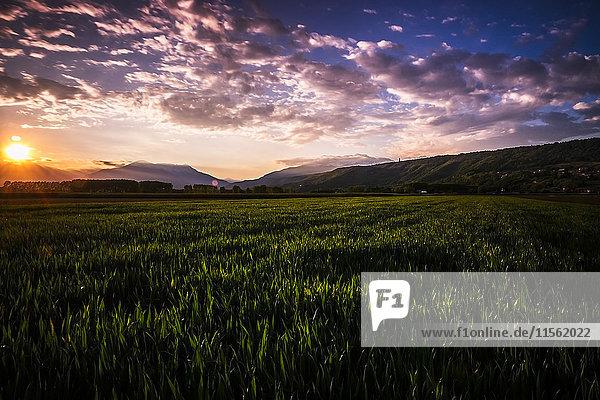 Italien  ländliche Landschaft bei Sonnenuntergang