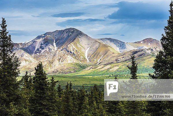 'A scenic view of the Alaska Range in Denali National Park near the Savage River on a summer day in South-central Alaska; Alaska  United States of America'