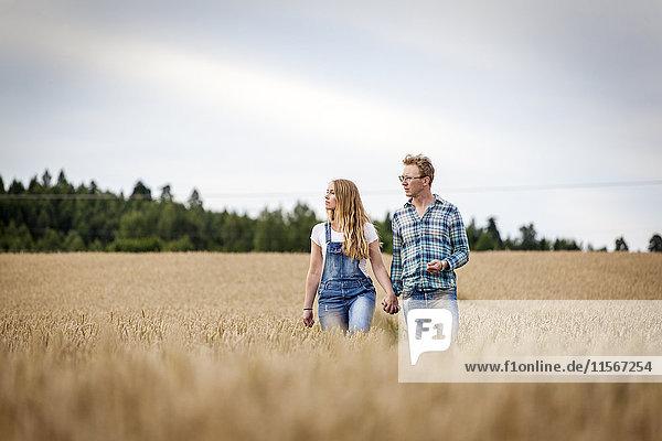 Finnland  Uusimaa  Siuntio  Mittleres erwachsenes Paar  das im Weizenfeld spazieren geht.