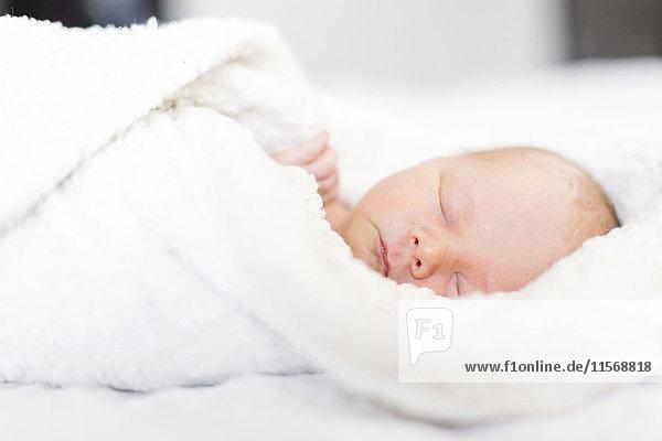 Baby boy (2-5 months) sleeping in white blanket Baby boy (2-5 months) sleeping in white blanket