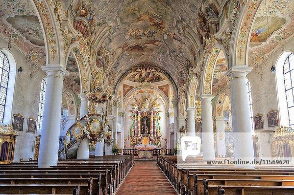Katholische Pfarrkirche St. Gallus und Ulrich  Kißlegg  Baden-Württemberg  Deutschland  Europa