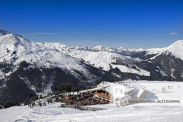 Skifahrer in Holzalm  Skigebiet Hochfügen  Zillertal  Tirol  Österreich  Europa