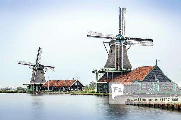 Old windmills  Zaanse Schans  open-air museum  Zaanstad  North Holland  Holland  Netherlands