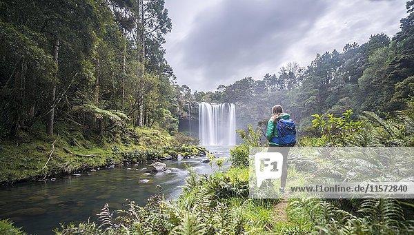 Wanderin steht vor Wasserfall  Rainbow Falls oder Waianiwaniwa  Kerikeri River  Northland  Nordinsel  Neuseeland  Ozeanien