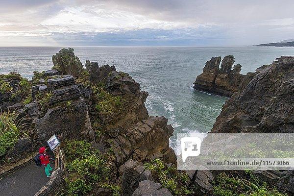 Sandsteinfelsen  Felsformation Pancake Rocks  Paparoa-Nationalpark  Punakaiki  Westküste  Südinsel  Neuseeland  Ozeanien