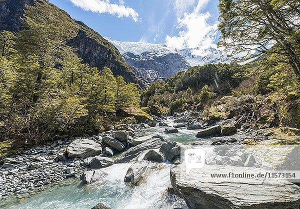 Gletscherfluss fließt durch Berglandschaft  Rob Roy Gletscher  Mount Aspiring National Park  Otago  Südinsel  Neuseeland  Ozeanien